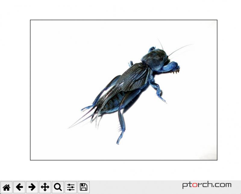 使用Matplotlib显示opencv图像